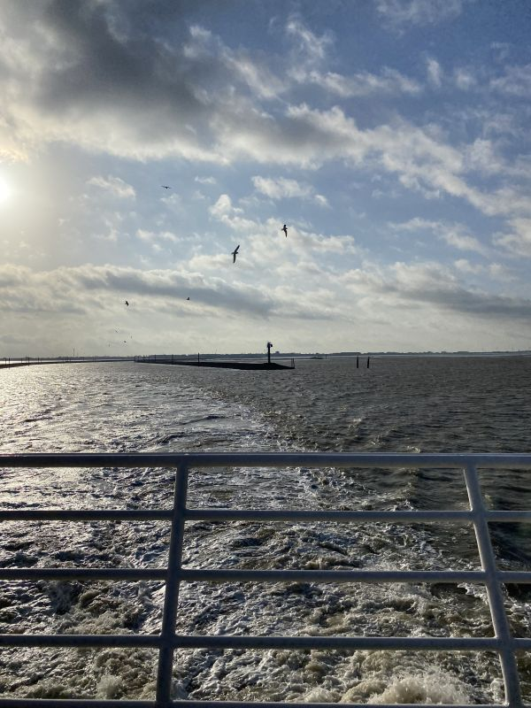 Nordsee (6)